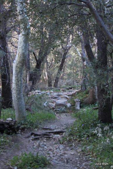 Madara nature trail