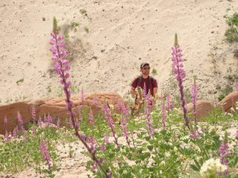 Charley and the lupine
